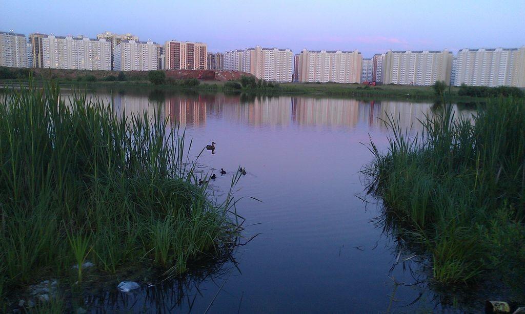 Вечернее Переделкино Ближнее со стороны Алешинки