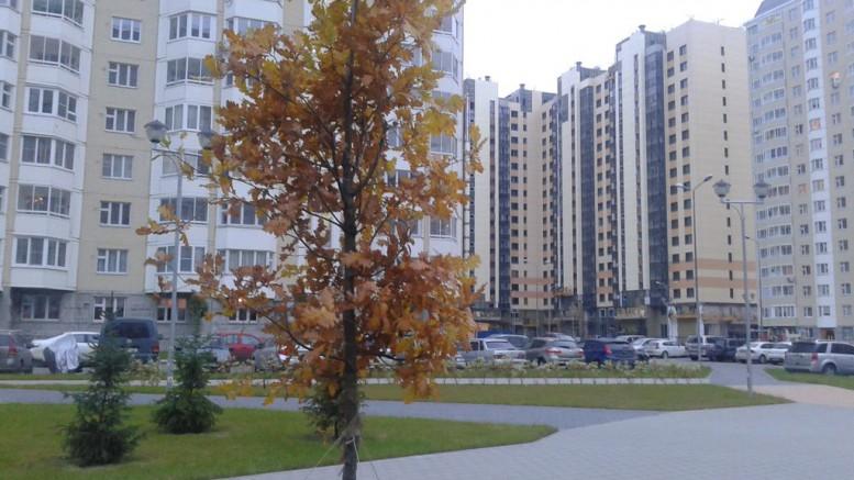 Осень в Переделкино Ближнее