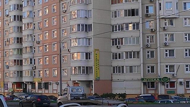 Медея в Ново-Переделкино