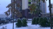 Деревья в Переделкино Ближнее