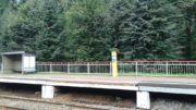 Платформа Мичуринец